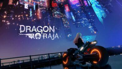 Dragon Raja Codes