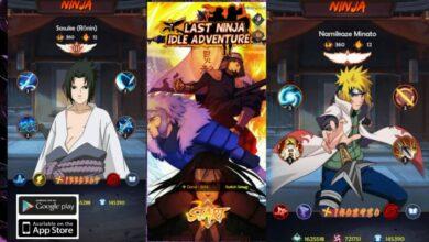 Last Ninja Idle Adventure Gift Codes